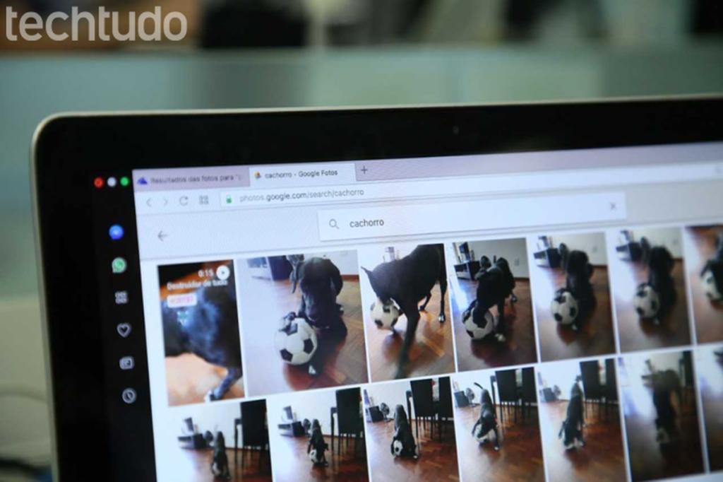 كيفية استيراد الصور من Google Drive إلى صور Google   الناشرين