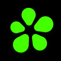 رمز تطبيق ICQ الجديد: الرسائل ، دردشة الفيديو