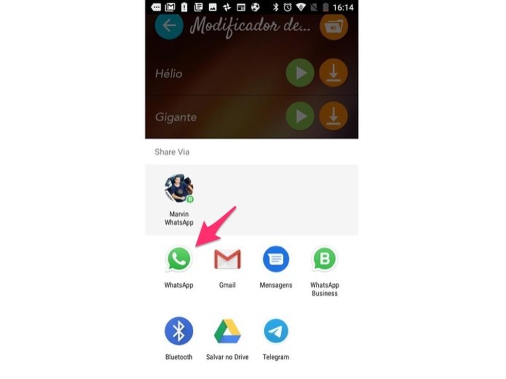 خيار للمشاركة مع WhatsApp مقطع صوتي تم تحريره في تطبيق Voice Changer لصورة Android: Reproduo / Marvin Costa
