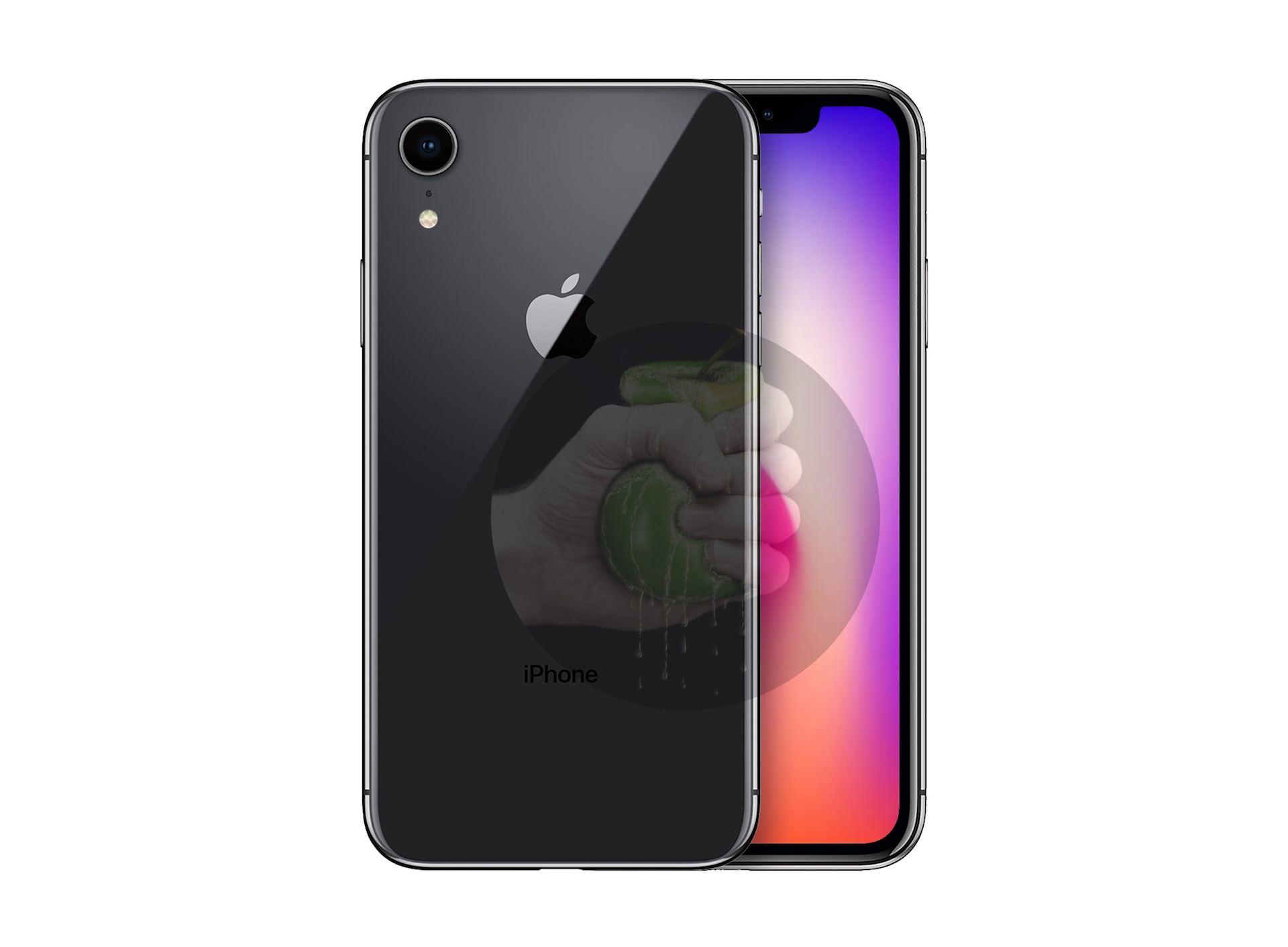من المفترض أن يكون iPhone 6.1 مزودًا بشاشة LCD وكاميرا خلفية